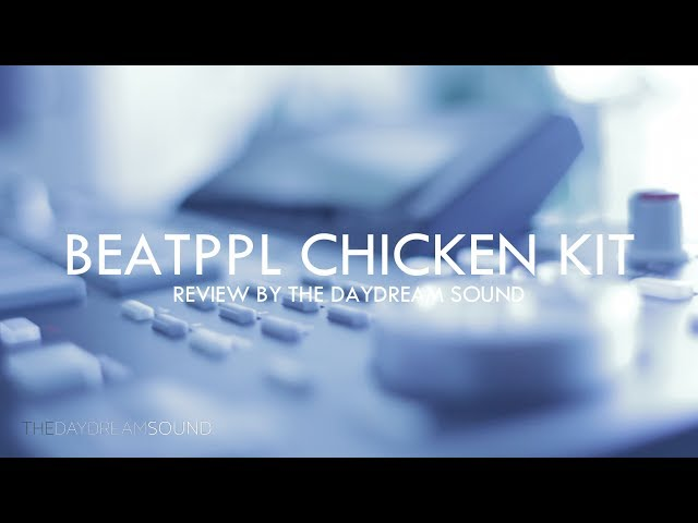 BeatPPL Chicken Kit Review Vintage Sampler Edition