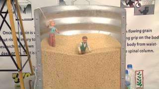 Labor Talk: Grain Bin Safety