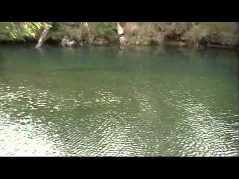 Honeymoon pool Collie WA
