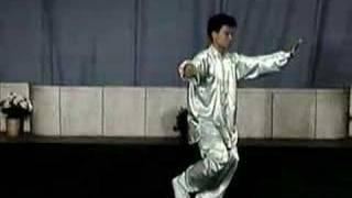 42 forms Yang Style Taiji Quan