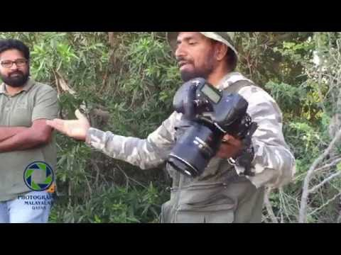 HOW TO BECOME A WILDLIFE PHOTOGRAPHER BY MR DILIP ANTHIKAD