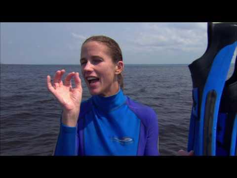 Embracing Change thru Ocean Exploration By Holly S. Lohuis