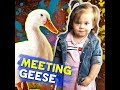 Meeting geese | KAMI |  Pokwang's daughter Malia was very excited to see white geese