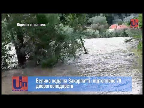 Велика вода на Закарпатті: підтоплено 70 дворогосподарств