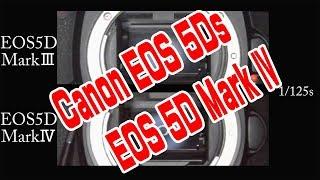 シャッターシーケンス キヤノンEOS5DMarkIV EOS5Ds