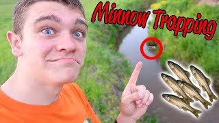 LIVE BAIT FISHING W/ TRAPPED MINNOWS!!!