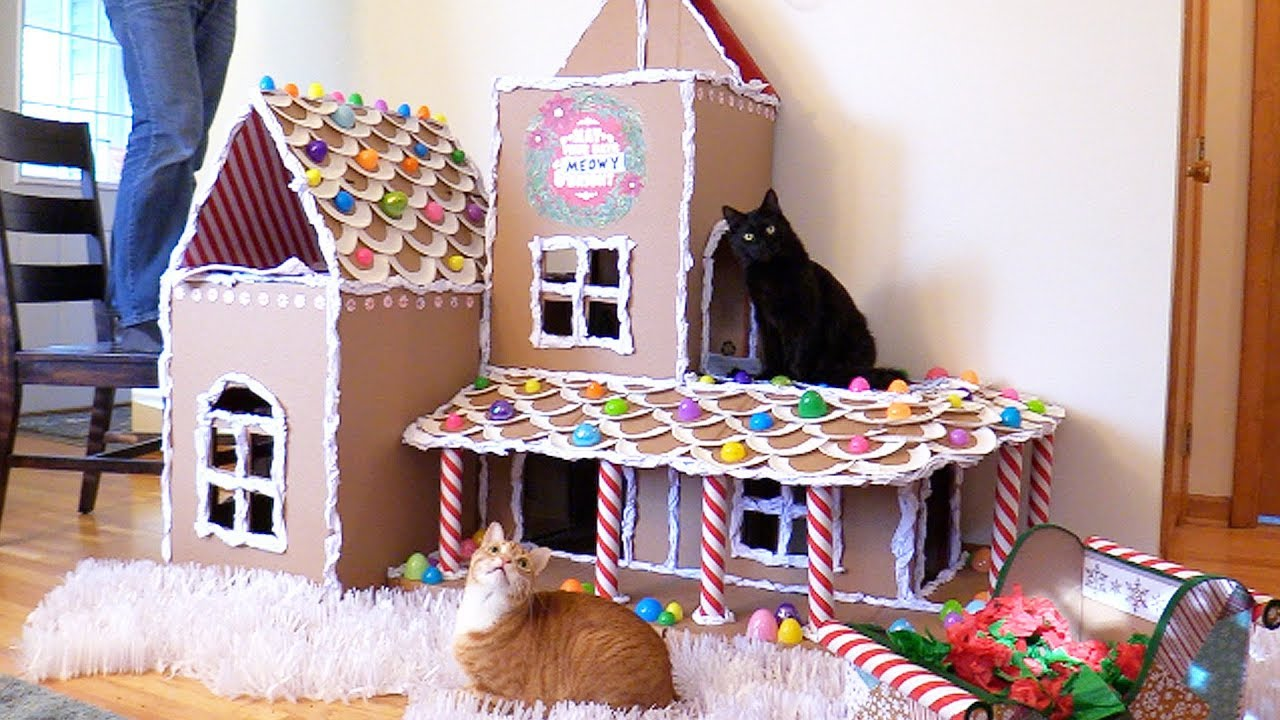 Epic diy gingerbread house for cats youtube epic diy gingerbread house for cats solutioingenieria Choice Image