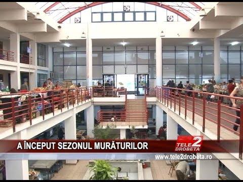 A iNCEPUT SEZONUL MURaTURILOR