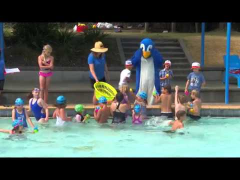 Nayland Pool Success Fuel - Carbon Neutral Wood Energy