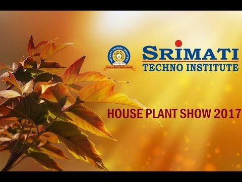 HOUSE PLANT SHOW 2017 | AGRI HORTICULTURE SOCIETY OF INDIA | STI PARTICIPATION