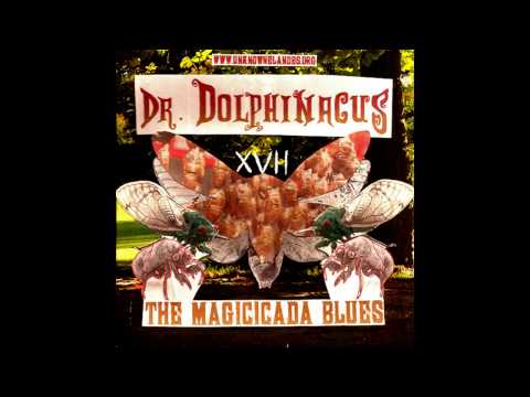 Dr. Dolphinacus - The Magicicada Blues (FREE DOWNLOAD)