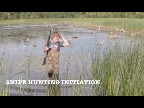 Initiation Chasse a la bécassine - US MN SEP 32018 - Snipe Hunting Initiation