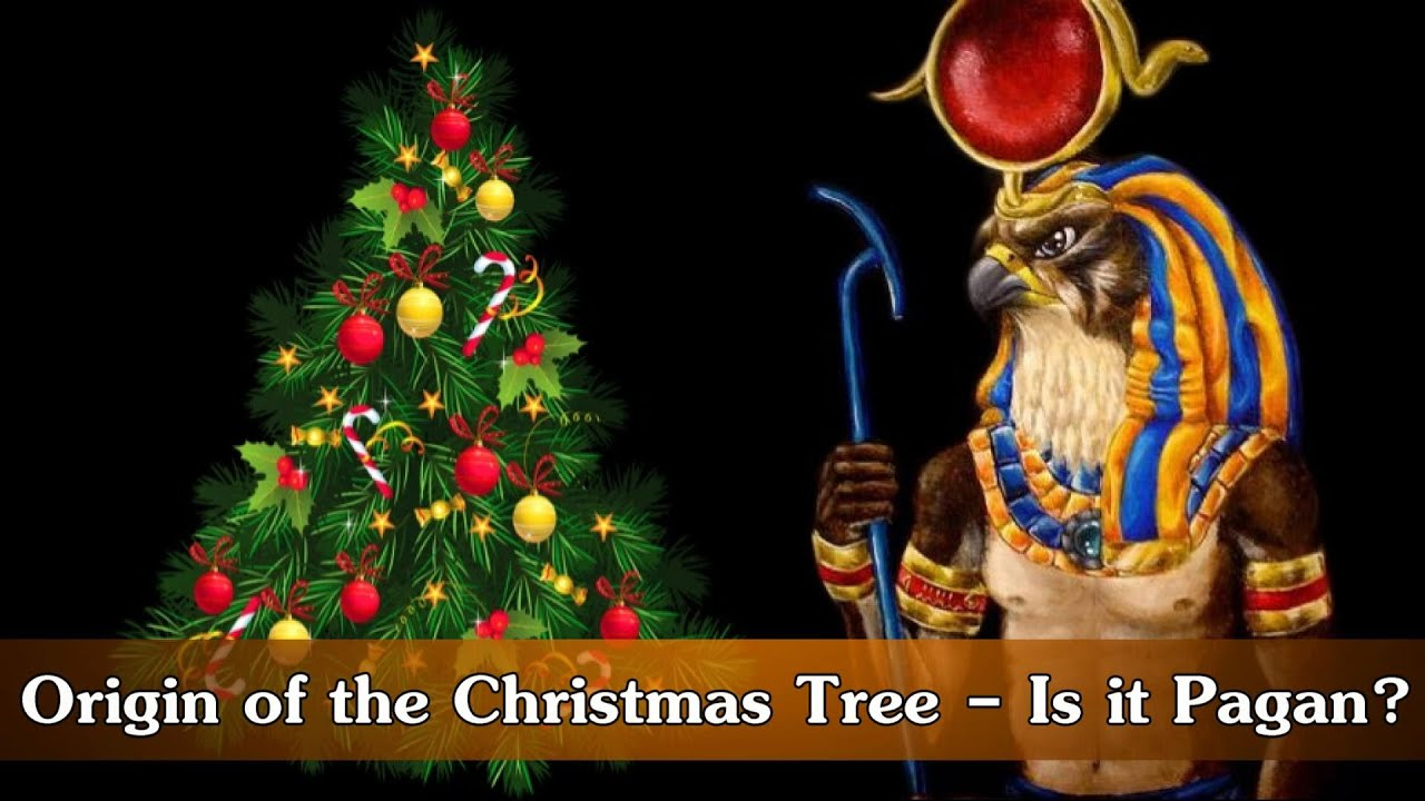 origin of the christmas tree is it pagan youtube - Origin Of Christmas Tree