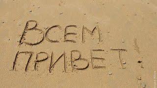 Пирожки и беляши // Индюшата // Холодное лето