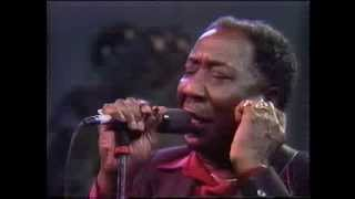 Muddy Waters / The Living Legends of Blues Video