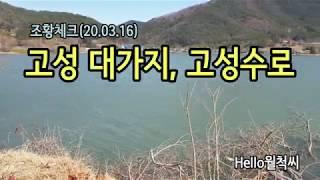고성수로/대가지 조황체크 (20.03.16) - Hel…