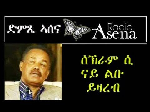 prof. araya debessay Very well said kibur prof araya debessay but, but, eritrean people are waiting for action and practical leaders like the late meles zenawi and not people who just.