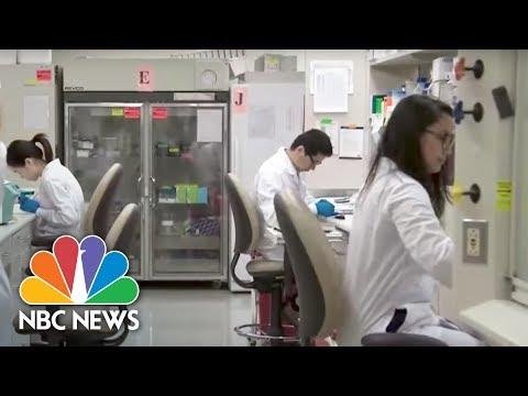 Gene Testing For Most Effective Drugs Could Help Save Lives | NBC Nightly News