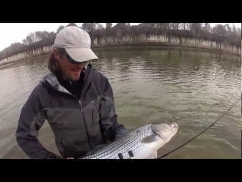 Fishing the Brazos with Shane Davies