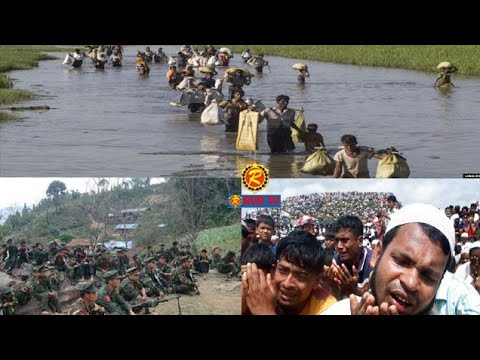 Rohingya Daily news Today  01 September 2019 ((( صوت الحق)))