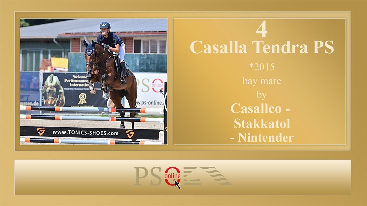 135.000 euro for Casalla Tendra PS - Equnews International