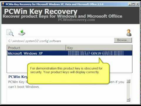 microsoft product key recovery software