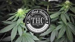 OC's Premium Medical Marijuana Dispensary & Delivery Service