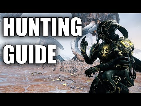 Fortuna Hunting - Guide & Review
