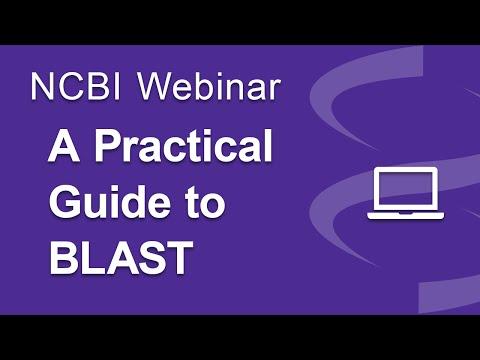Webinar: A Practical Guide to NCBI BLAST