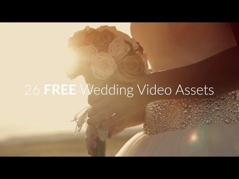 26 FREE Wedding Video Assets