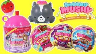 Smooshy Mushy Series 2 Do Dat Donuts & Besties