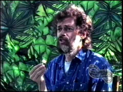 Terence McKenna and Nicole Maxwell ~ Shamanology Of The Amazon