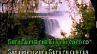 KARAOKE  /  INFANTIL  /  VARIOS