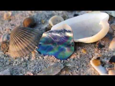 Photography | Indialantic Florida | Florida Sunrise 4 24 14 | Central Florida | Melbourne Beach
