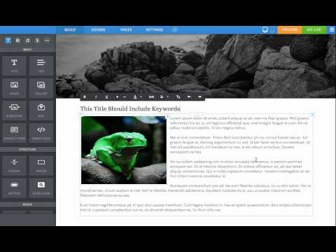 Weebly SEO - Adding ALT tags to Images on Weebly