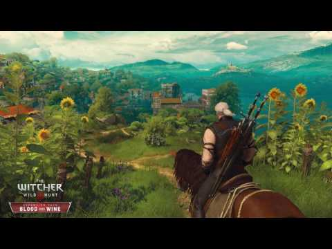 The Witcher 3 Blood and Wine: Dialog Background / Funeral ost