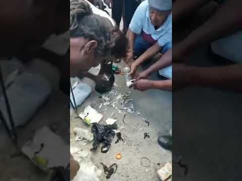 Montego Bay Mad Man Found With Crocus Bag Of Money? How?!