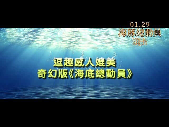 《海豚總動員》Magic Arch|01.29 守護海底 中/英文版同步開戰 (英文配音版)