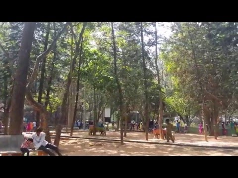 Visit To Bannerghatta National Park and Zoo   Travel Videos    Bangalore