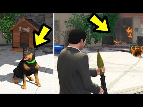GTA 5 - What will Chop do if i Destroy Franklin's House?