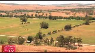 Coolmore Australie : Le plus grand Haras du monde sur 4 500 ha !