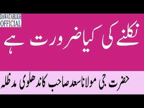 Nikalnay Ki Kia Zarorat Hai Mol Saad Sahab
