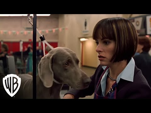 Best In Show | Get The Busy Bee | Warner Bros. Entertainment