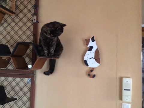 猫の振り子時計