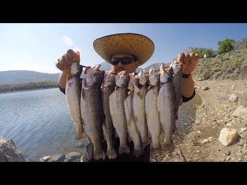 Mammoth Lakes Fishing