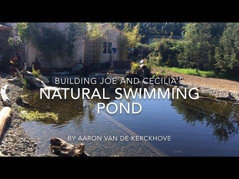 Joe And C S Natural Swimming Pool Youtube