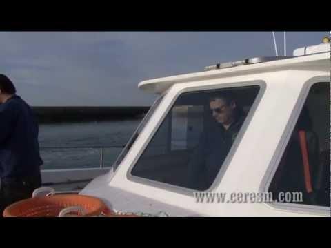 CERES - Recherches sonar