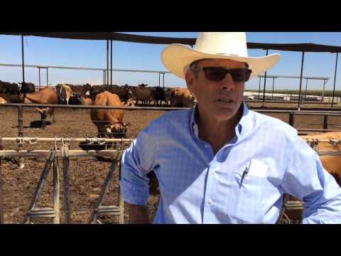 Mark Watte, Tulare Dairy Farm