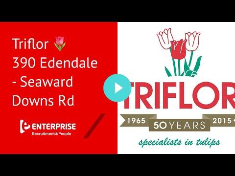 Triflor 🌷 390 Edendale - Seaward Downs Rd