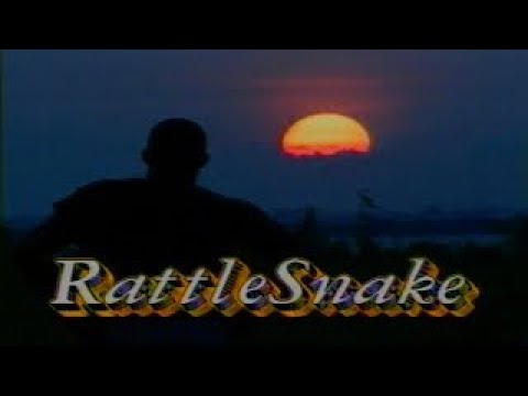 Download Rattle Snake, 1995